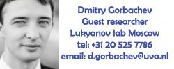 MC-DmitryGorbachev